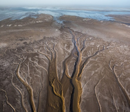 Colorado River reaching Sea of Cortez in May, 2014